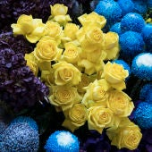 Flores y moda (06-09-2018)