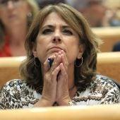 La ministra Dolores Delgado en el Senado