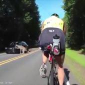 Unos ciclistas graban el momento en el que un coche atropella a un ciervo en Carolina del Norte