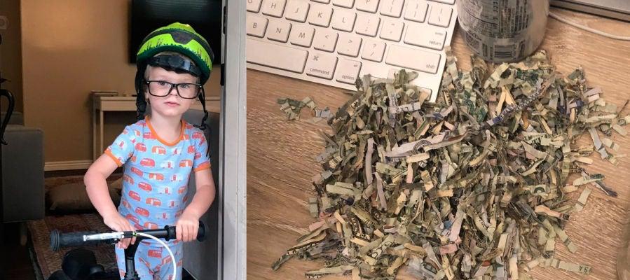 Un niño de dos años tritura 1.060 dólares que sus padres tenían ahorrados