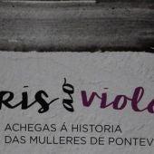 Do Gris ao Violeta