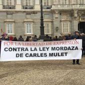 La Asociación de Vecinos Independientes de Cabanes se movilizan en Madrid.