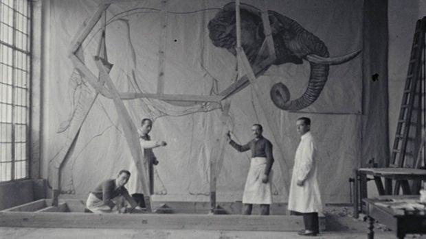 La Cultureta 5x15: La magia (taxidermista) que resucitó al elefante del museo