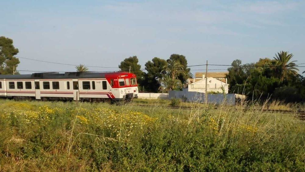 Un tren circula a la altura de la pedanía de Torrellano de Elche.