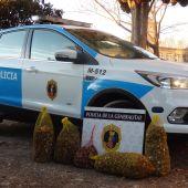 Detenidas cinco personas con cien kilos de caracoles de distintas especies en Borriana.