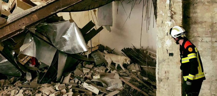 La Unidad Canina de los Bomberos ha supervisado que no hubiera personas atrapadas.