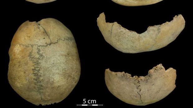 Tertulia Zona Cero: Canibalismo en el Antiguo Egipto