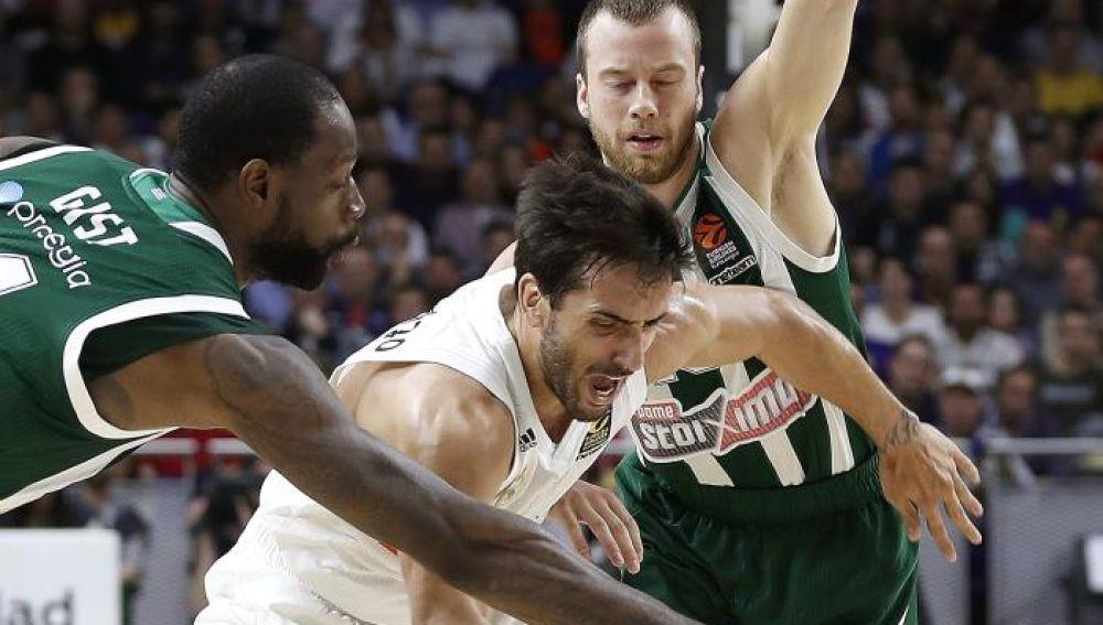 Facu Campazzo lucha un balón ante dos jugadores del Panathinaikos