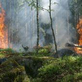 Un software calcula el impacto economico de los incendios forestales