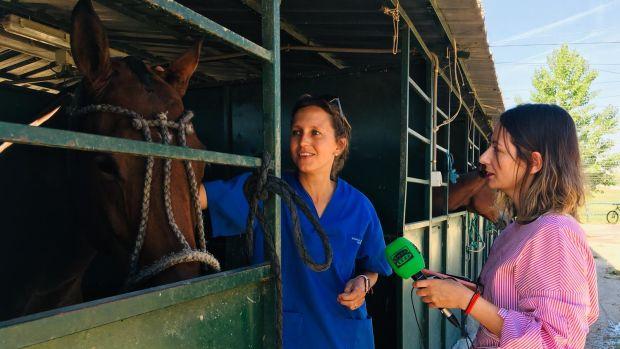 La España que curra: ¿Cómo es el día a día de un veterinario?