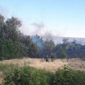 Incendio en la ribera del Henares