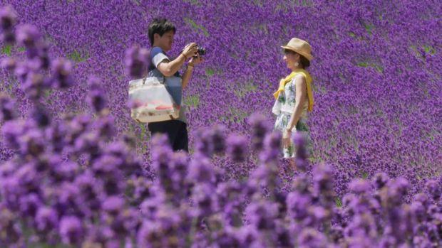 Alquilan familias en Japón para acabar con la soledad