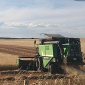 cosechadora cereal