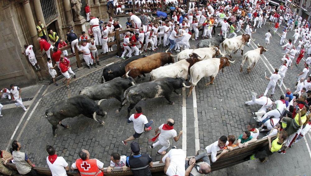 Los toros de la ganadería sevillana de Miura