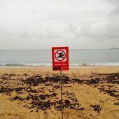 Cartel de prohibición de baño en una playa de Palma.