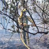 bombero forestal BRIF