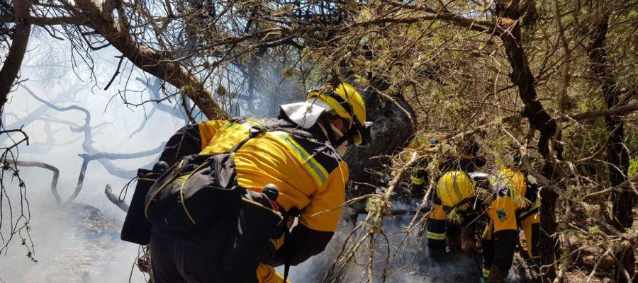 Operativos actuando en el incendio forestal.