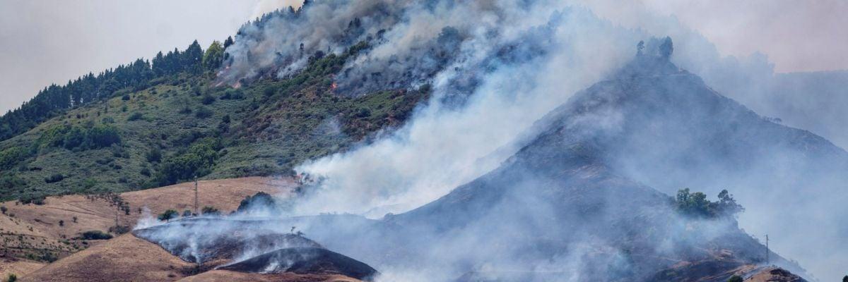 El incendio de Gran Canaria, sin control: arrasa más de 6.000 hectáreas y deja casi 9.000 personas evacuadas