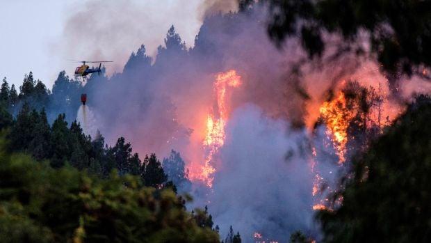 Continúan las evacuaciones por el incendio forestal de Gran Canaria que ya afecta a más de 1.500 hectáreas