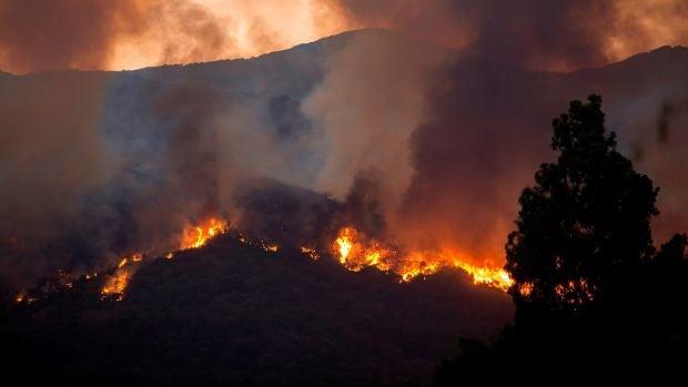 """El incendio de Estepona sigue """"muy activo"""", pero se espera estabilizarlo durante la jornada"""