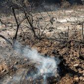 Incendios en Gran Canaria
