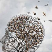 Asociación de Familiares de Enfermos de Alzheimer