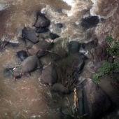 Imagen de los elefantes muertos al caer por una cascada