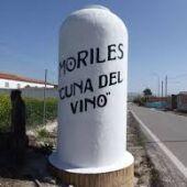 Cata de los vinos de Moriles
