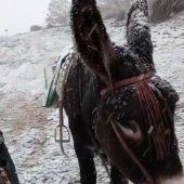 Casimiro acude a votar bajo la nieve junto a su burra Juanita