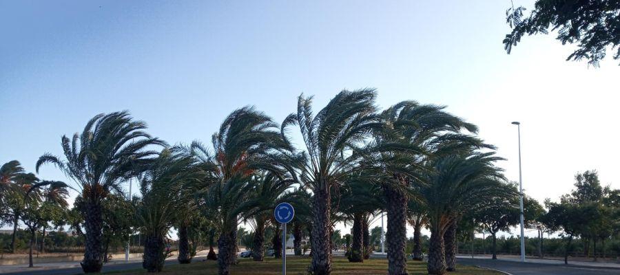 Rotonda de circulación en Elche.