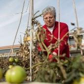 Una mujer retira las malas hierbas en la huerta de 'Trabensol'