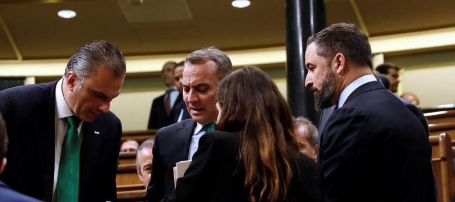 Los diputados de Vox en el Congreso