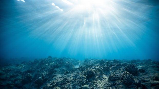 2100: Una Odisea en la Tierra | 01x13 Mirando al mar…