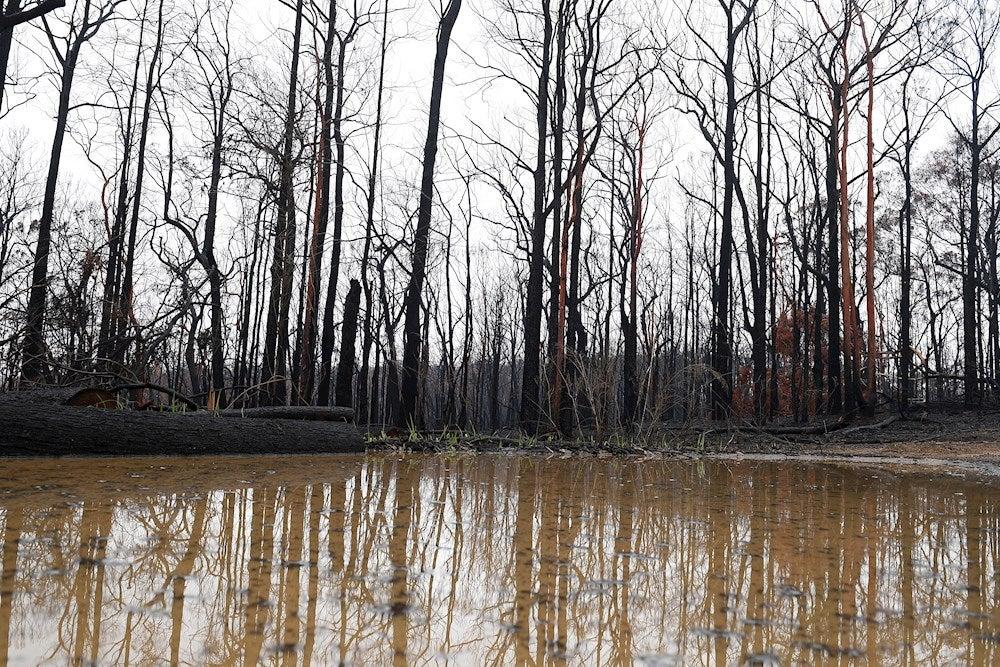 Señales del fin del mundo: Las áreas protegidas