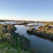 Parque periurbano de La Algaida, los Toruños