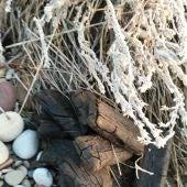 Imagen de la droga encontrada en la playa de Moncofa.