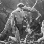 Johnny Weissmuller y Maureen O'Sullivan interpretando a Tarzán y Jane