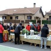 Mercado ecológico y artesanal en Carrascalejo