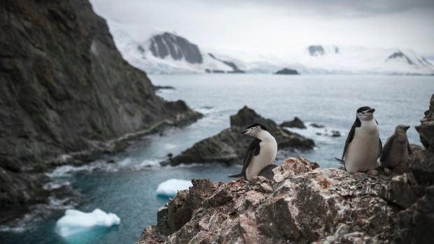 Señales del fin del mundo: La acidificación del Océano Antártico