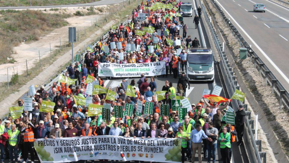 Movilización de los agricultores de la provincia de Alicante.