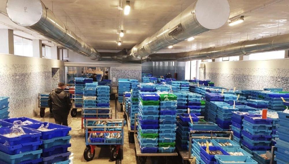 Cajas de pescado en la Lonja de Santa Pola.