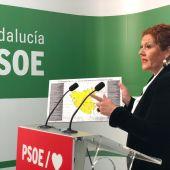 Araceli Maese, secretaria de organización del PSOE de Cádiz