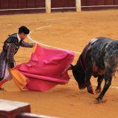 Fallas 2020: Cartel de toros de la Feria de las Fallas de Valencia