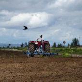 Asaja valora positivamente la labor del sector del campo durante el estado de alarma