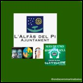 LOLI ALBERO AYUNTAMIENTO DE ALFAZ DEL PI