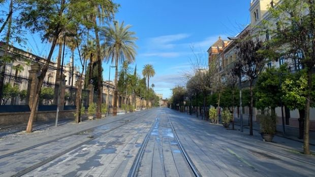 Ni peatones ni ciclistas en la calle San Fernando de Sevilla