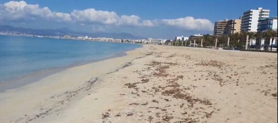 La playa de Palma vacía en pleno mes de abril, debido al Estado de alarma que ha provocado la crisis sanitaria.