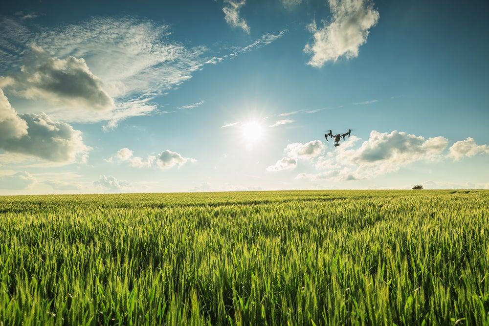 Fronteras del futuro: Robots para la agricultura