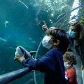 Malen y Jon, primeros visitantes al Aquarium tras el confinamiento