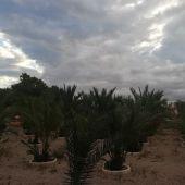 Nubes en Elche.